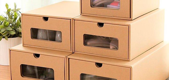 utiliza cajas zapatos organizadores
